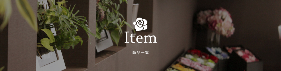 Store guide 店舗のご案内